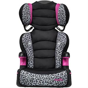 Rental Evenflo Big Kid High Back Booster Car Seat, Phoebe